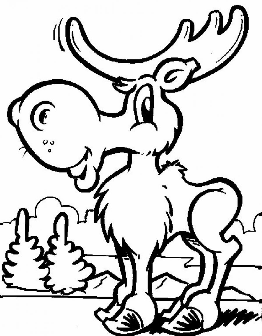 moose and zee coloring pages photo21