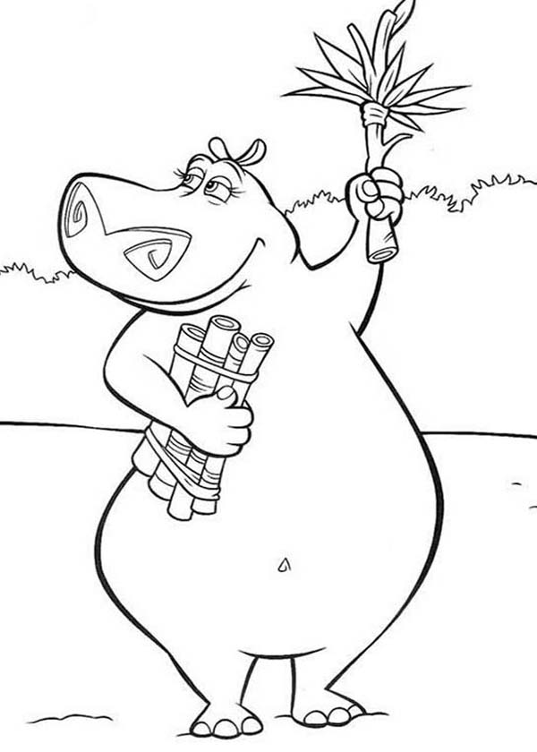 Gloria the Hippo Coloring Page