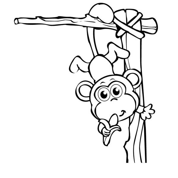 Hanging Monkey Coloring Page