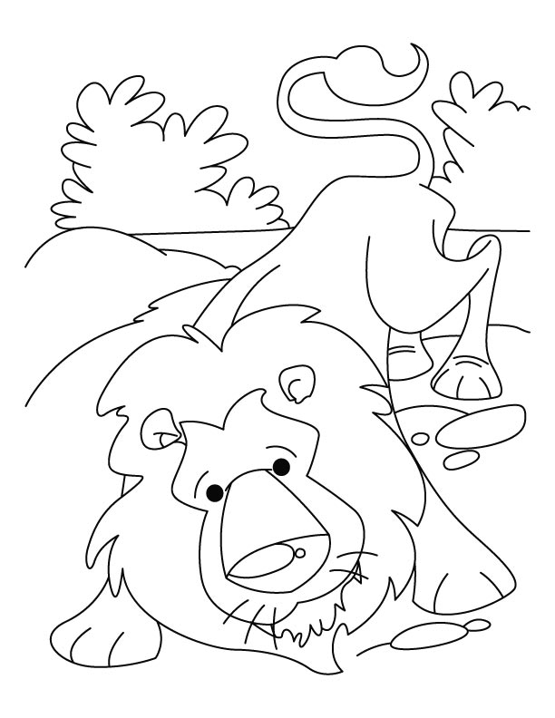 Lion Coloring Picture