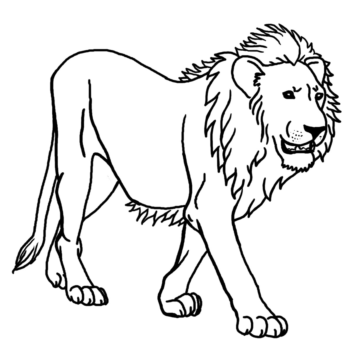 Free Lion Coloring Sheets