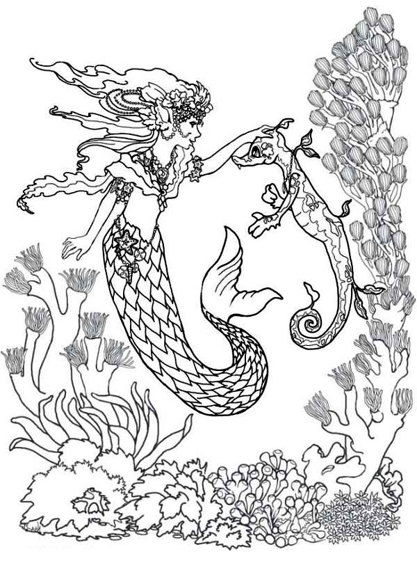 Seahorse and Mermaid Coloring Pages