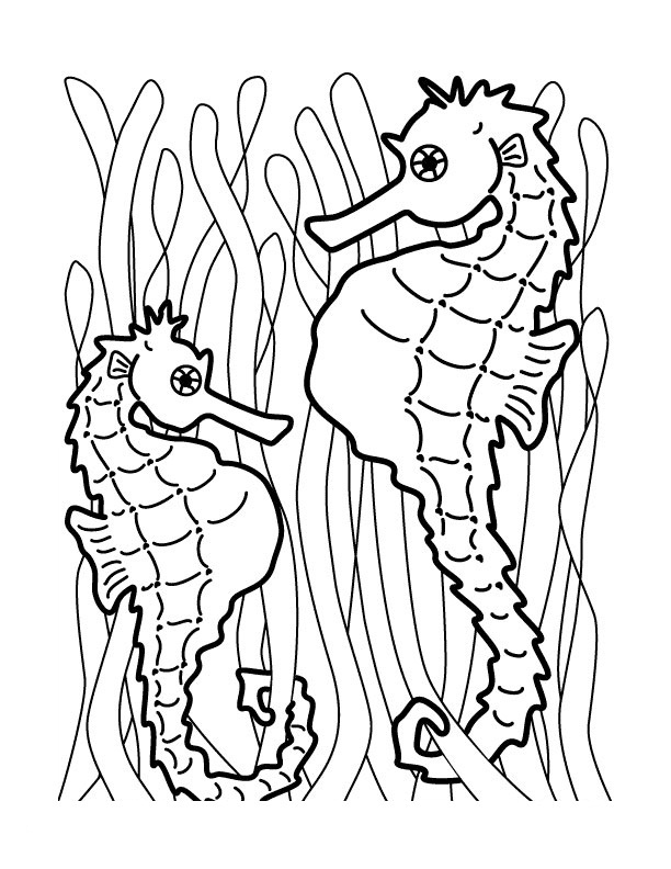 Mister Seahorse Coloring Page