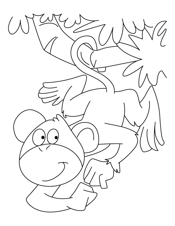 Monkey Coloring Page Free