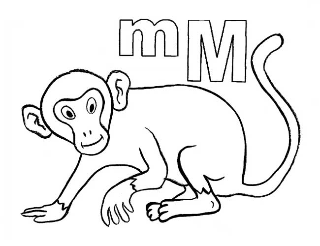 Monkey Coloring Pages Preschool