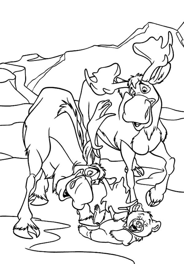 Moose Coloring Page Free