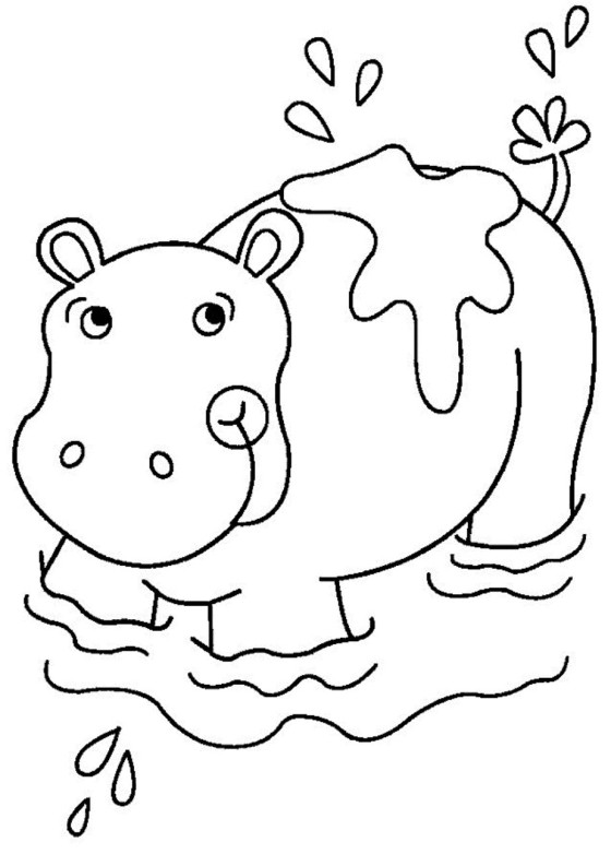 Hippo Coloring Pages Preschool