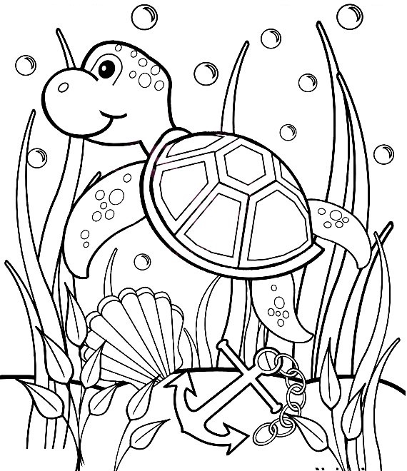 Slobbery image pertaining to sea turtle printable