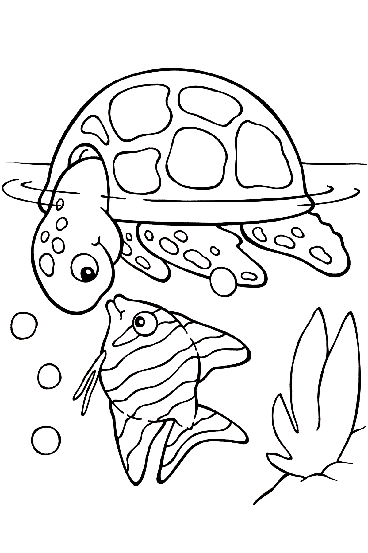 Sea Turtle Coloring Picture Sea Turtles Coloring Picture