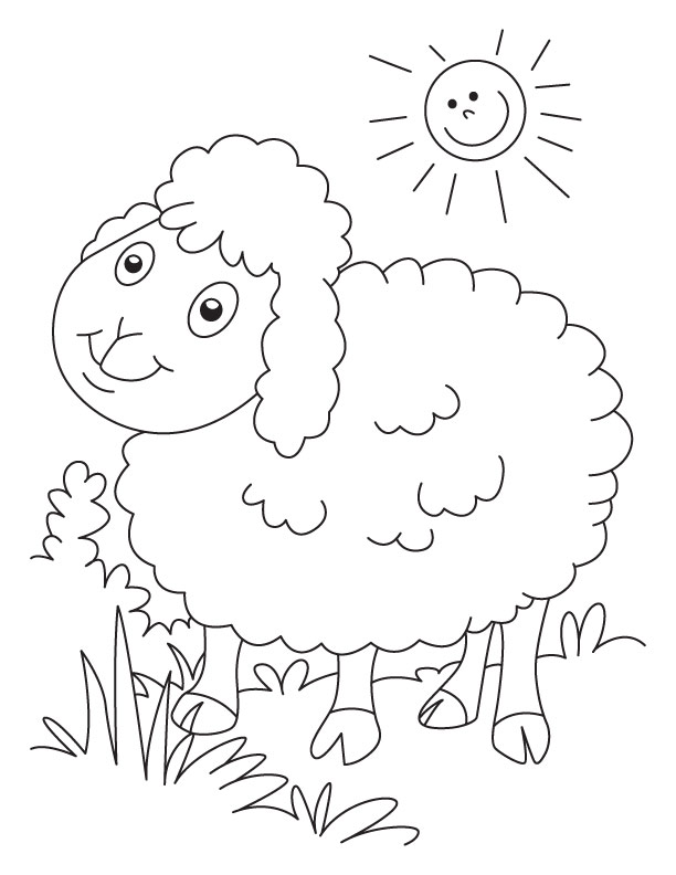 Sheep Coloring Pictures