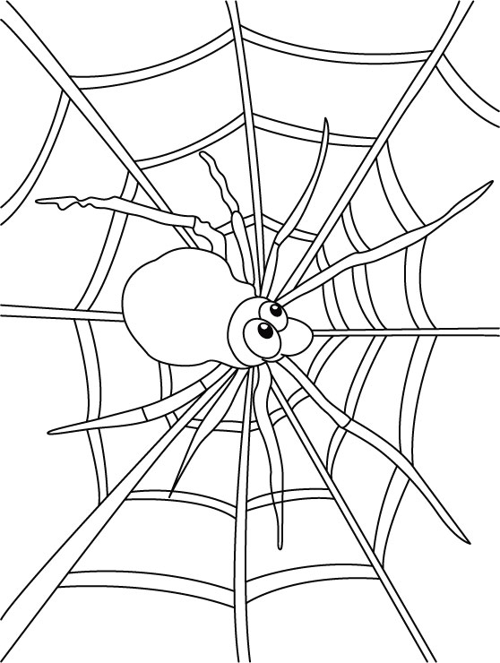 Spider Coloring Page to Print