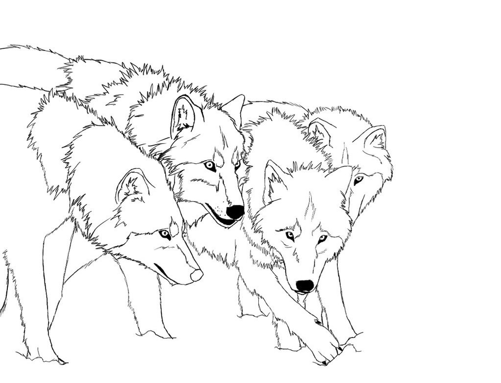 Wolf Pack Coloring Page
