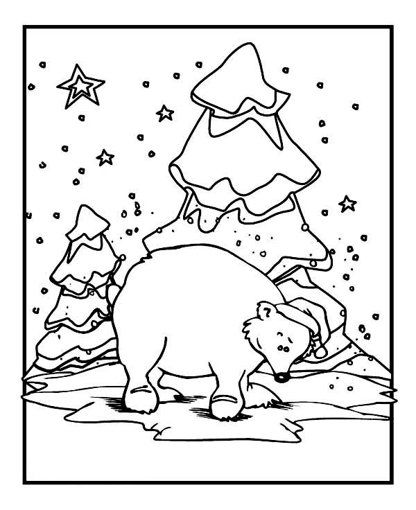 Coloring Pages For Winter Animals